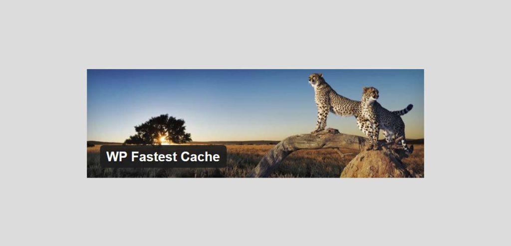 Wordpress - Najjednoduchší a najrýchlejší WP Cache systém